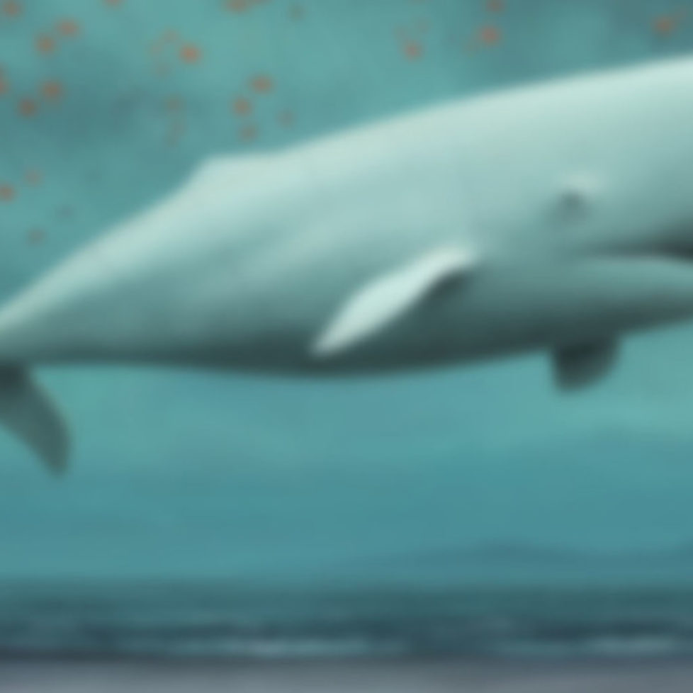cropped-whale-blurred-1800.jpg